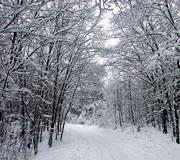 hiver mini