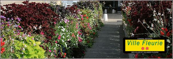 ville et village fleuris article