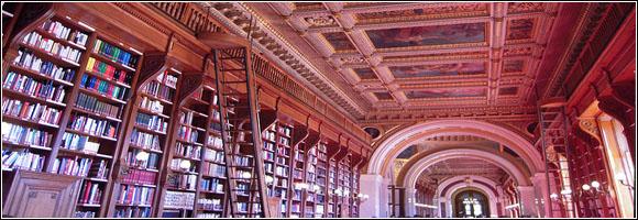 bibliothèque article