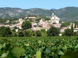 Bédoin_village_et_vignes
