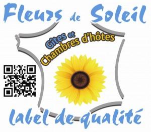 logo FDS - HD