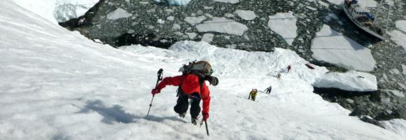antarctique skier