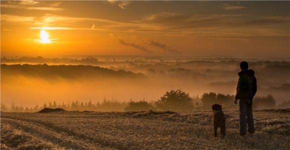 3-dog-walk-yorkshire-hills
