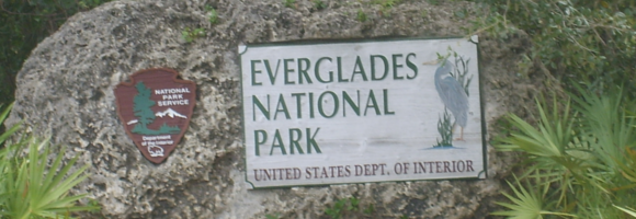 parc nationale des everglades