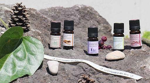 5 huiles essentielles à avoir pendant les vacances