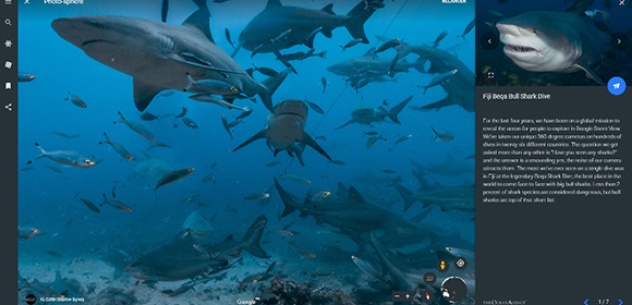 requin google earth